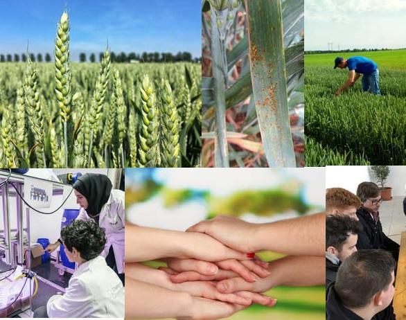 Над 1000 оперативни групи за иновации в Европа дават тласък за развитието на селските райони