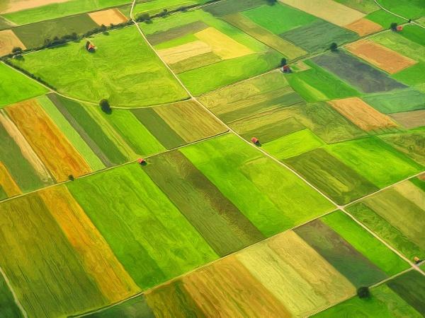 Парламентарната комисия по земеделие ще обсъди отмяната на срока за нов проектозакон за земите