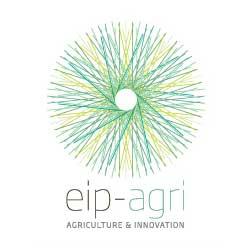 Вдъхновяваща идея от ЕПИ АГРИ: Намаляване употребата на антибиотици в овцефермите по време на агнилна кампания
