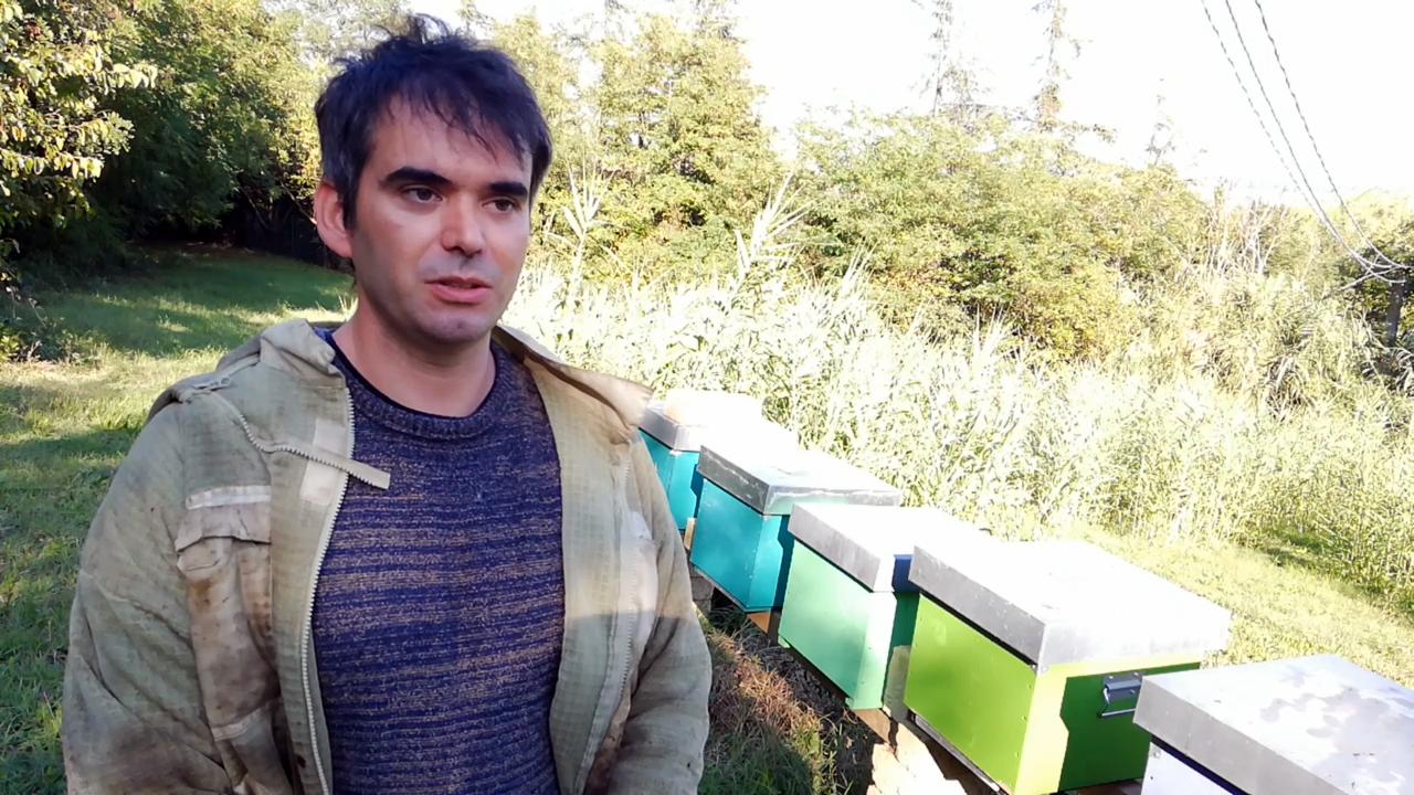 Агроиновация NOMADI-App: Нови възможности за дистанционен мониторинг в продуктивното пчеларство