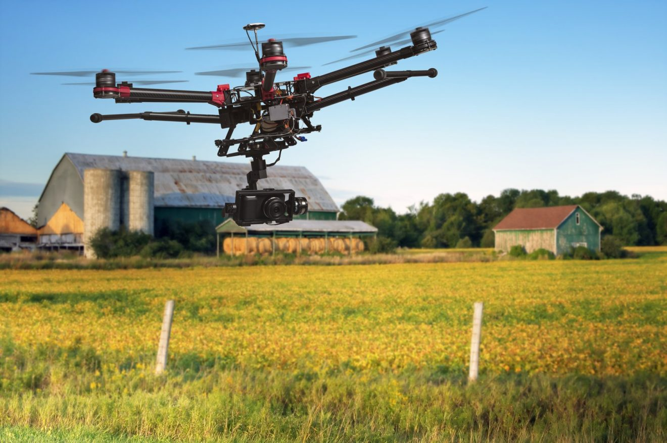 "МС одобри новите научни програми ""Интелигентно животновъдство"" и ""Интелигентно растениевъдство"" за периода 2021-2024 г."