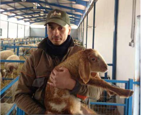 Вдъхновяваща идея от ЕПИ- АГРИ: Подкрепа за навлизане на нови участници в биологичното млечно животновъдство