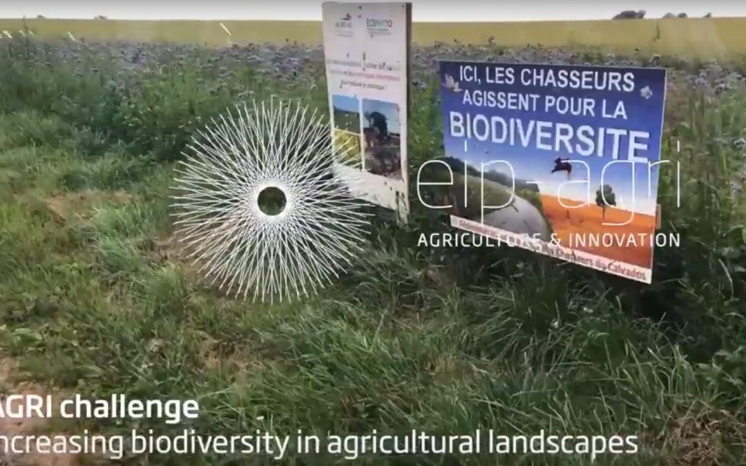 Вдъхновяваща идея от ЕПИ-АГРИ: Управление на ландшафта за увеличаване на биоразнообразието
