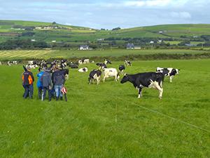 Вдъхновение отвъд границите от ЕПИ- АГРИ: холандски млекопроизводители посещават ирландски ферми