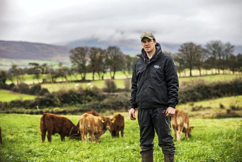 Вдъхновяваща идея от ЕПИ-АГРИ: Обединяване на производителите на говеждо месо за устойчивост на сектора