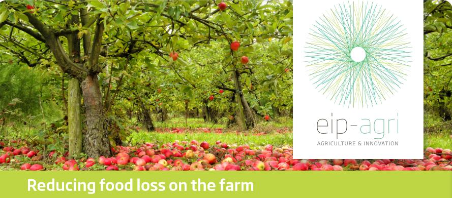 Намаляване загубите на храна във фермата: Кои нови практики и технологии в размките на земеделските стопанства могат да ограничат загубата на храна?