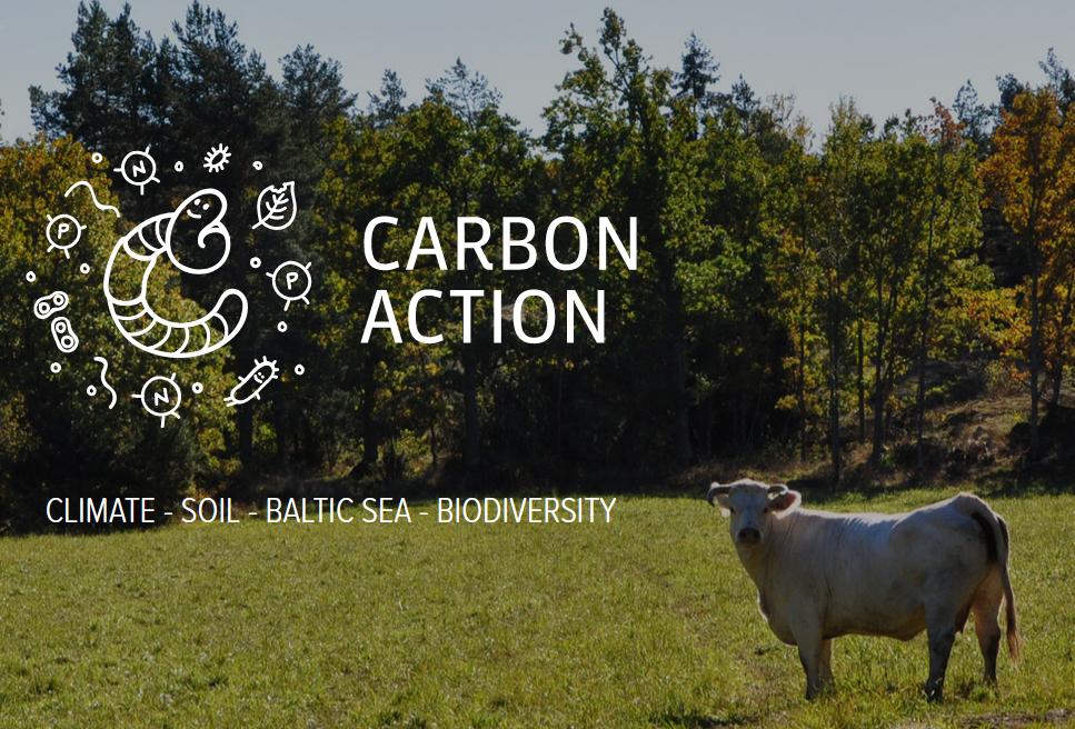 Вдъхновяваща идея от ЕПИ- АГРИ: Въглеродно земеделие за здрави почви